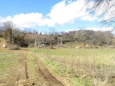 Abingdon Residential Lots & Land For Sale: Black Hollow Road