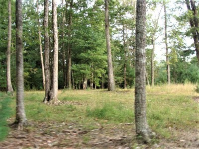 Max Meadows Residential Lots & Land For Sale: Tract 4b Grouse Ridge Rd