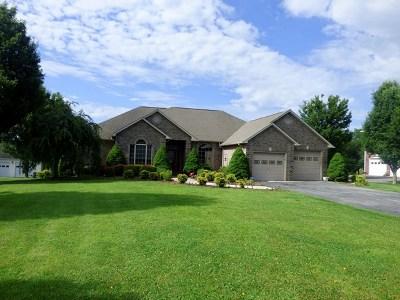 Wythe County Single Family Home For Sale: 307 Sherwood Avenue