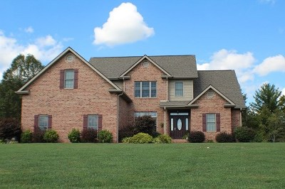 Galax Single Family Home For Sale: 238 Sunshine Valley Ln