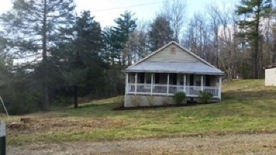 Galax Single Family Home For Sale: 244 Sidney Ln