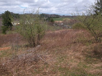 Residential Lots & Land For Sale: Tbd Regency Court