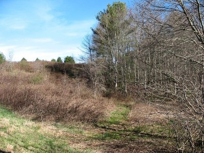 Hillsville Residential Lots & Land For Sale: Tbd Deer Meadow Drive