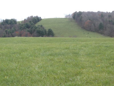 Carroll County, Grayson County Residential Lots & Land For Sale: Tbd Maplewoods Dr