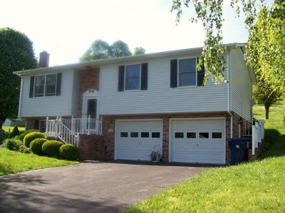 Saltville Single Family Home For Sale: 315 Mathieson Road