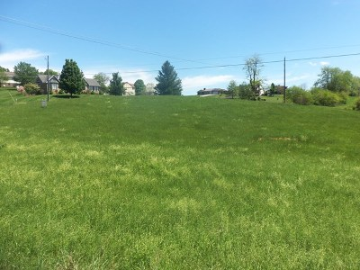Chilhowie Residential Lots & Land For Sale: Tbd Lot2 Chestnut Ridge Road