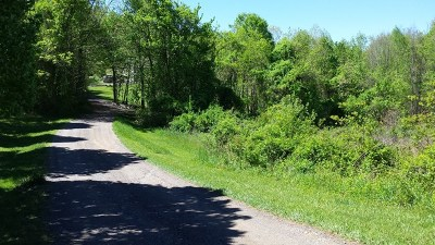 Carroll County, Grayson County Residential Lots & Land For Sale: Tbd Kenny Lane