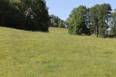 Abingdon Residential Lots & Land For Sale: Lot# 6 Hillandale Road