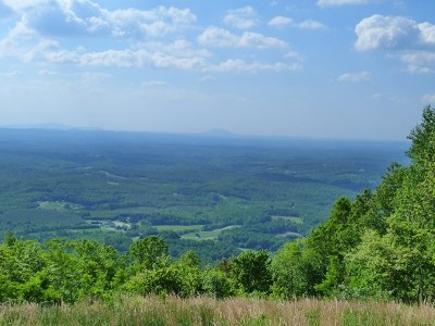 Carroll County Residential Lots & Land For Sale: Tbd Reflections Point Trail