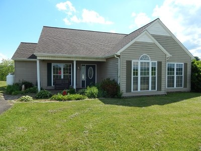 Galax Single Family Home For Sale: 881 Cliffview