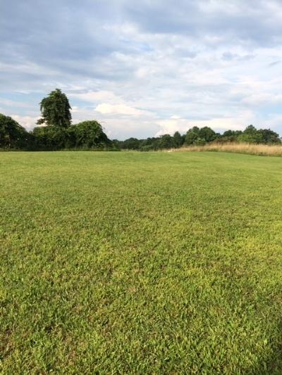 Hillsville Residential Lots & Land For Sale: 456 Little Bit Rd