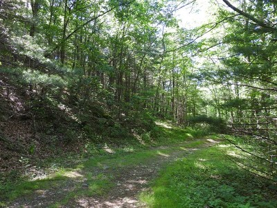 Fries Residential Lots & Land For Sale: Tbd Mountain Music Lane