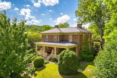 Abingdon Single Family Home For Sale: 133 Valley St. NE