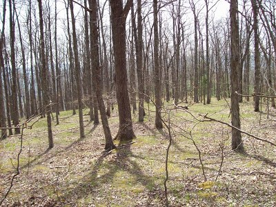Elk Creek Residential Lots & Land For Sale: Tbd Off Comers Rock Rd.