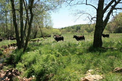 Carroll County Residential Lots & Land For Sale: 302 Cardinal Circle