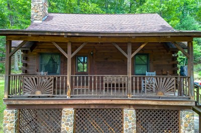 Bland Single Family Home For Sale: 376 Southview Lane