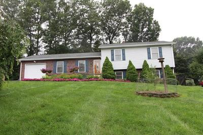 Galax Single Family Home For Sale: 203 Taylorwood Road