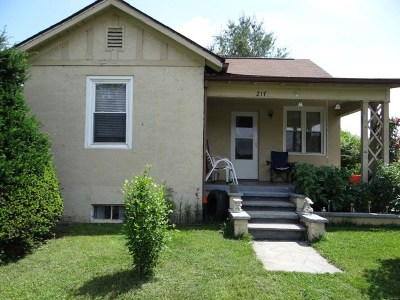 Chilhowie Single Family Home For Sale: 217 Poplar Ave.