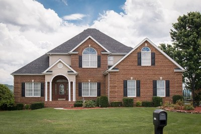 Bristol Single Family Home For Sale: 20670 Hedgerow Hill
