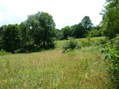 Carroll County, Grayson County Residential Lots & Land For Sale: Jeb Stuart Hwy
