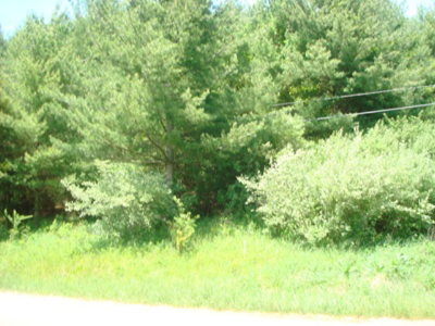 Austinville Residential Lots & Land For Sale: Tbd Oak Ridge Dr