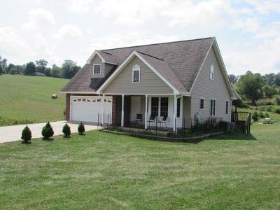 Wytheville Single Family Home For Sale: 205 Wytheview Drive