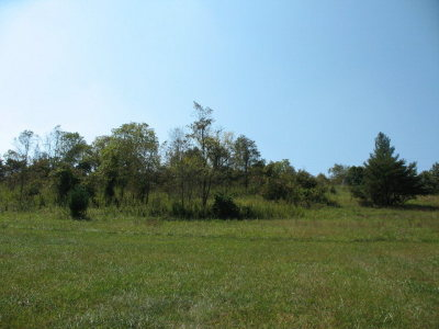 Galax VA Residential Lots & Land For Sale: $39,900