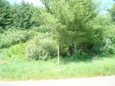 Austinville Residential Lots & Land For Sale: Tbd Beaver Dam Dr