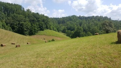 Saltville Residential Lots & Land For Sale: Tbd Bluegrass Trail