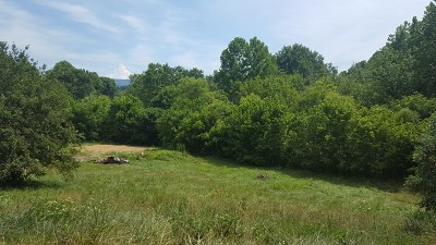 Meadowview Residential Lots & Land For Sale: Tbd Morrison Road