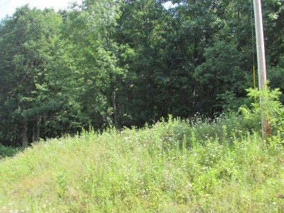 Bland Residential Lots & Land For Sale: Lot 19 Big Bend Drive