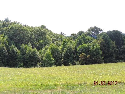 Carroll County, Grayson County Residential Lots & Land For Sale: Lot 5 Stone Ridge Rd.