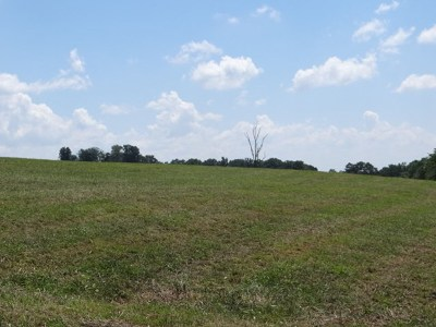 Bristol Residential Lots & Land For Sale: Reedy Creek Rd.