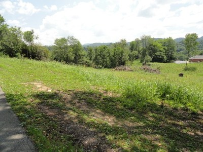 Marion Residential Lots & Land For Sale: Tba Althea Street