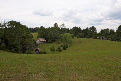 Woodlawn VA Residential Lots & Land For Sale: $274,500