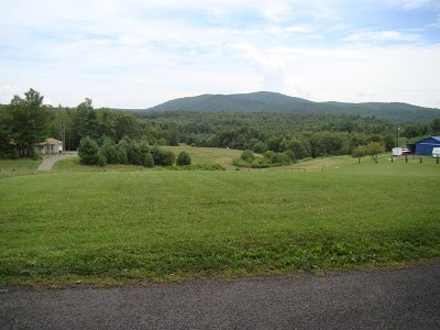 Galax Residential Lots & Land For Sale: 1205 Wolfpen Ridge Rd