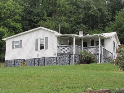 Wytheville Single Family Home For Sale: 176 Kennel Lane