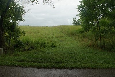 Wythe County Residential Lots & Land For Sale: Tbd Pope Road