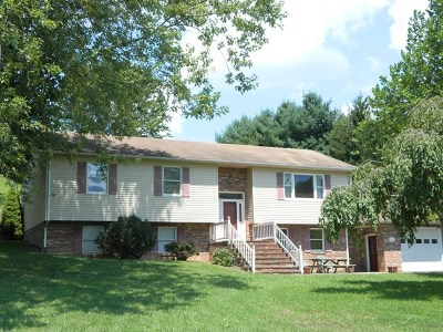 Marion Single Family Home For Sale: 425 Bales Ln.