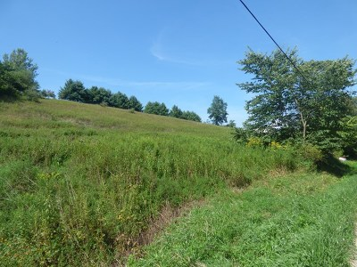 Rural Retreat Residential Lots & Land For Sale: Tbd Kimberlin Road