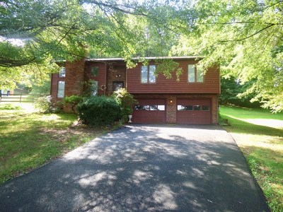Max Meadows Single Family Home For Sale: 620 Whispering Pines Road