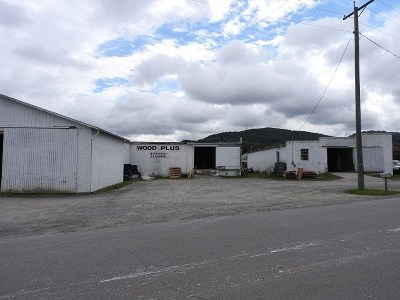 Carroll County, Grayson County Commercial For Sale: 111 Depot Avenue