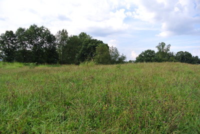 Abingdon Residential Lots & Land For Sale: Tbd Homestead Way