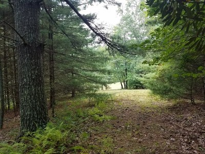 Independence Residential Lots & Land For Sale: Tbd Buck Mountain Rd