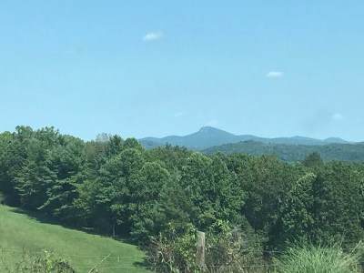Hillsville Residential Lots & Land For Sale: Tbd Collier School Rd