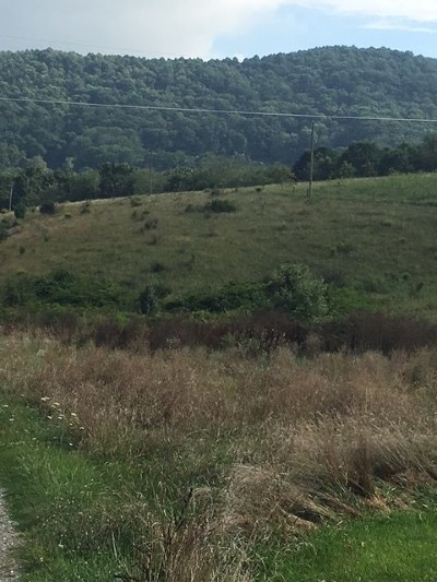 Carroll County, Grayson County Residential Lots & Land For Sale: Tbd Bronco Rd.