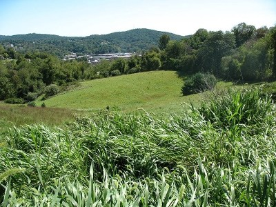 Galax Residential Lots & Land For Sale: Tbd Highland/Dobyns