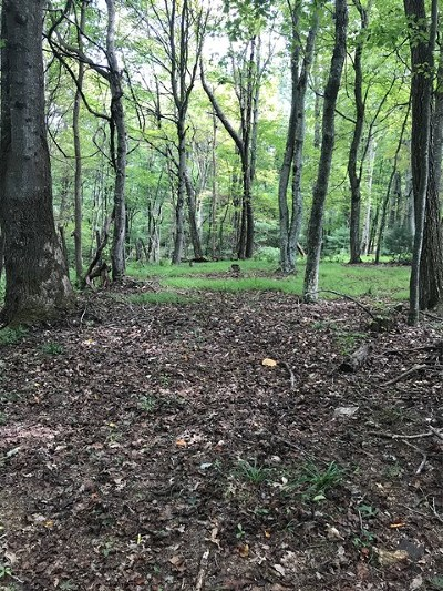 Carroll County, Grayson County Residential Lots & Land For Sale: Tbd Mitchells Crossroad