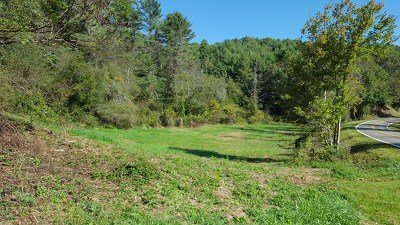 Grayson County Residential Lots & Land For Sale: Tbd Riverside Dr
