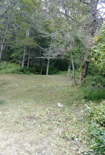 Carroll County, Grayson County Residential Lots & Land For Sale: Tbd Poplar Camp Road